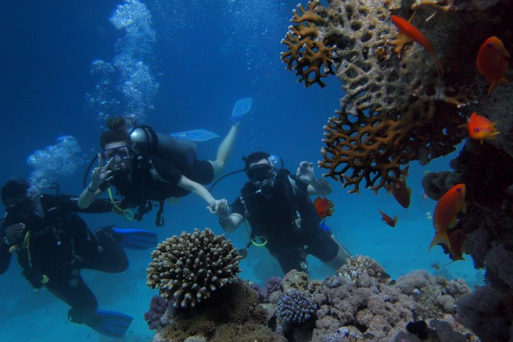 diving-and-snorkeling-1