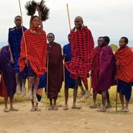 tribe-visits