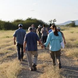 walking-safaris-1